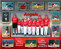 Angels AAA 2010 8x10 copy