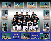 Blue Jays AAA 2010 sample B copy