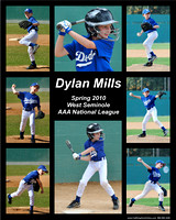Dylan Mills collage 2010