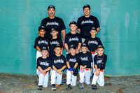 Marlins team-AA-Amer 11-07-2013 (2)