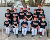 Diamondbacks-Majors Spring 2012