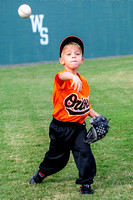 Orioles-T-Ball 10-23-2013 (10)