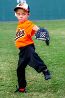 Orioles-T-Ball 10-23-2013 (8)