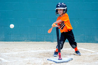 Orioles-T-Ball 10-23-2013 (25)
