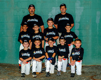 Marlins team-AA-Amer 11-07-2013 (1)