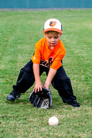 Orioles-T-Ball 10-23-2013 (4)