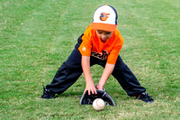 Orioles-T-Ball 10-23-2013 (5)